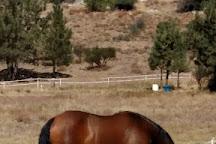 Living Free Animal Sanctuary, Mountain Center, United States