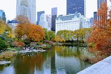 The Pond, New York City, United States