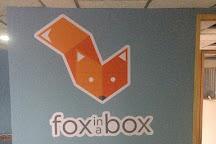 Fox in a Box, Guadalajara, Mexico