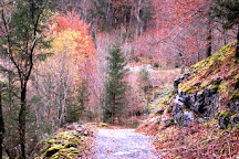 Gorges des Tines, Sixt-Fer-a-Cheval, France