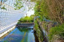 Biosphere 2, Oracle, United States