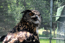 Animal Adventures Family Zoo & Rescue Center, Bolton, United States