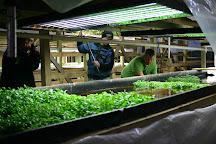 Sweet Water Organics, Milwaukee, United States