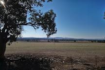 Walkabout Apiaries, Milawa, Australia