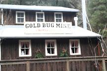 Hangtown's Gold Bug Park, Placerville, United States