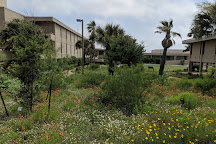 The University of Texas Marine Science Institute, Port Aransas, United States