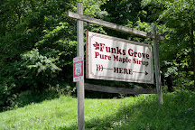 Funk's Grove Maple Sirup, Shirley, United States