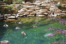 Zoo La Boissiere du Dore, La Boissiere du Dore, France