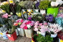 Hong Kong Victoria Park Lunar New Year Fair (Flower Market), Hong Kong, China