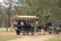 Altina Wildlife Park, Darlington Point, Australia