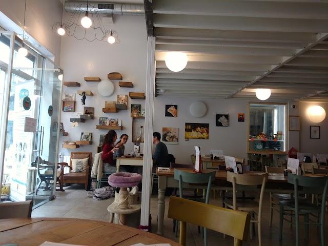 Miagola Cafe
