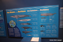 Whale Interpretive Centre, Pleasant Bay, Canada