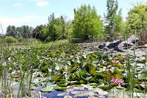 Jardin botanico de la Universidad de Talca, Talca, Chile