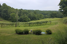 Pleasant Hill Vineyards, Athens, United States