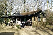 Winkworth Arboretum, Godalming, United Kingdom
