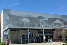 Adventure Aquarium, Camden, United States