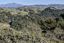 Huckleberry Botanic Regional Preserve, Oakland, United States