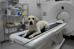 Boundary Bay Veterinary Specialty Hospital (Langley)