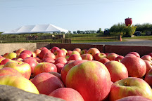 Apple Barn Orchard and Winery, Elkhorn, United States