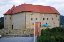 Castles, Čatež ob Savi, Slovenia
