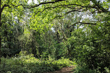 Berrylands Nature Reserve, Surbiton, United Kingdom