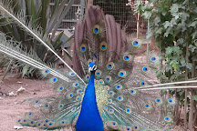Zoologico de Quilpue, Quilpue, Chile
