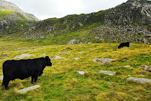 Y Garn, Snowdonia National Park, United Kingdom
