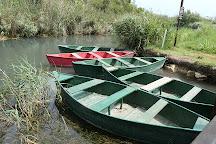 Parque Natural del Marjal de Pego-Oliva, Pego, Spain