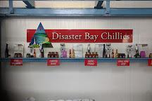Disaster Bay Lookout, Eden, Australia
