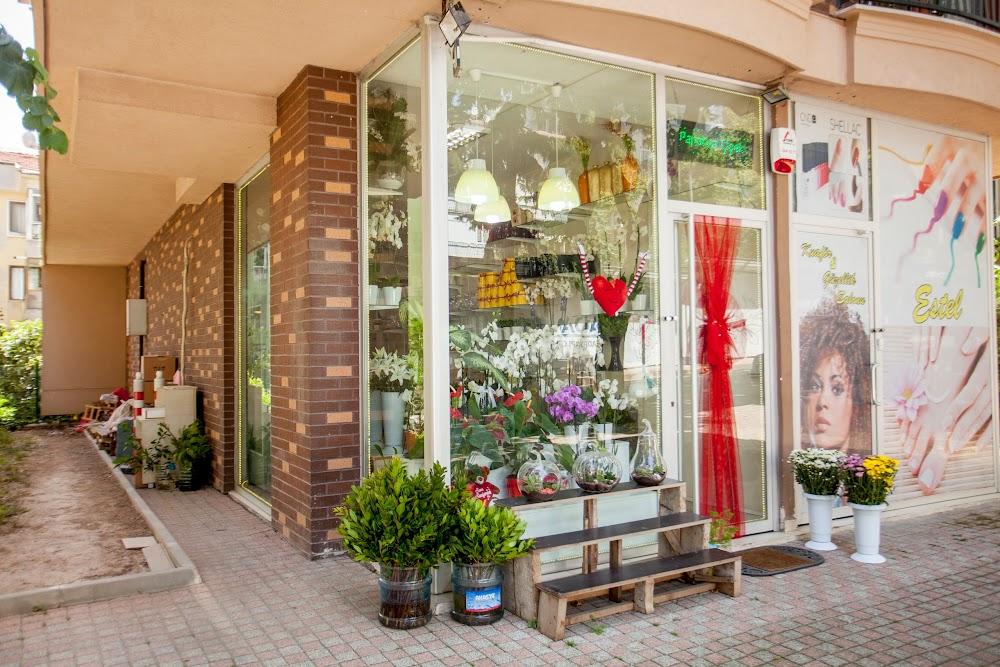 Магазин цветов мимоза самара, букеты