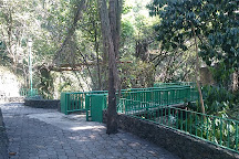 Parque Barranca De Amanalco, Cuernavaca, Mexico