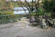 Dublin Zoo, Dublin, Ireland