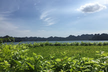 Soi Sim Island, Halong Bay, Vietnam