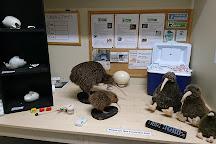 West Coast Wildlife Centre, Franz Josef, New Zealand