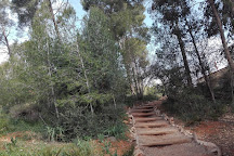 Foret d'ain Chkef, Fes, Morocco