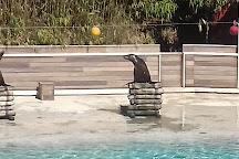 Zoo de La Fleche, La Fleche, France