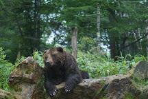 Bear Mountain Sahoro, Shintoku-cho, Japan