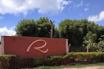 Reijers Producao de Rosas, Sao Benedito, Brazil