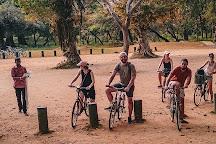 Belkin Tales Holidays, Colombo, Sri Lanka