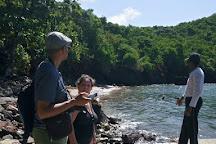 Poterie Fidelin, Terre-de-Bas, Guadeloupe