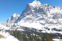 Gletscherschlucht Grindelwald, Swiss Alps, Switzerland