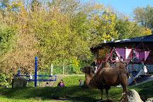 Tierpark Stadt Haag, Haag, Austria
