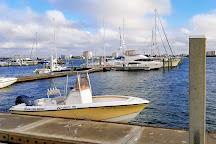 Tierra Verde Boat Rentals, Tierra Verde, United States