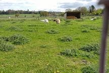 Rowdey Cow Farm Cafe, Rowde, United Kingdom