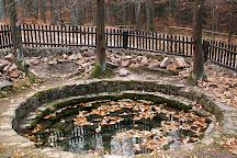 Swietokrzyski National Park, Bodzentyn, Poland