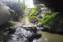 Waipu Cave, Waipu, New Zealand