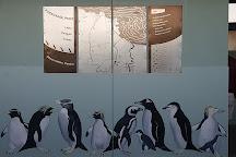 Penguin Observation Centre, Burnie, Australia