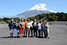 GV Tours, Puerto Montt, Chile