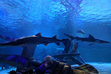 SEA LIFE at Mall of America, Bloomington, United States