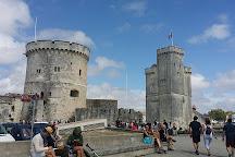 Muséum d'Histoire naturelle de La Rochelle, La Rochelle, France